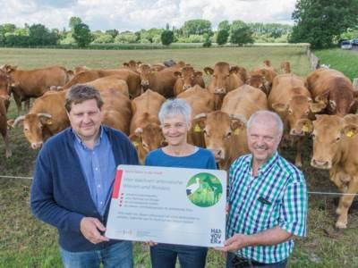 Drei Personen stehen vor einer Rinderherde