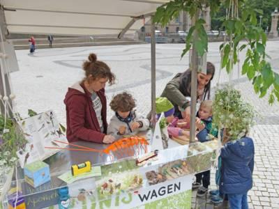 Zwei Frauen, die Kinder Pflanzen erklären.