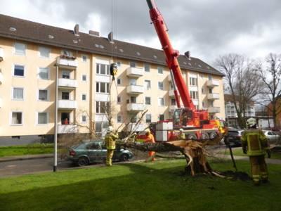 Einsatz eines Feuerwehrkranes in der Weihrauchstraße - der auf den PKW gestürzte Baum wird angehoben, entfernt und damit die Gefahr beseitigt.