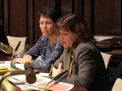 zwei Referentinnen sitzen neben einander hinter einem Pult, eine davon spricht in das Mikrofon vor ihr.
