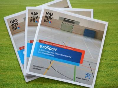 """Broschüren mit dem Titel """"e.coSport - 15 Jahre energetische Sportstättensanierung"""""""