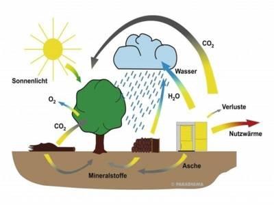 Schema des CO2 Kreislaufs