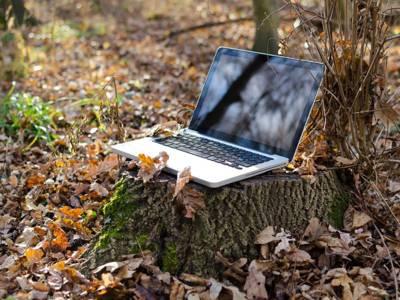 Auf einem Baumstamm steht ein geöffneter Laptop.