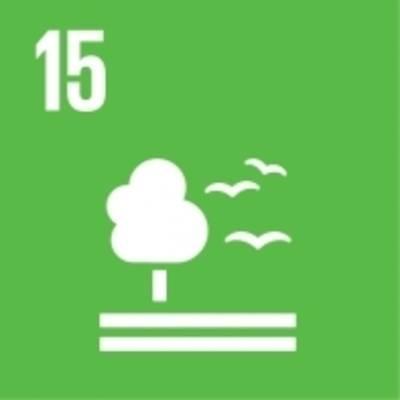 """Symbol für globales Nachhaltigkeitsziel Nr. 15 """"Erhalt der Ökosysteme und der Artenvielfalt"""""""