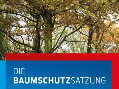 """Die Krone von Laubbäumen mit der Beschriftung """"Baumschutzsatzung"""""""