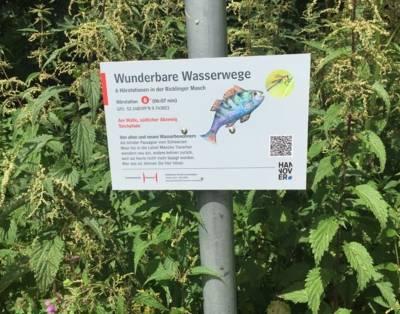 Schild der Station 6 der Wunderbaren Wasserwege vor wildem Grün