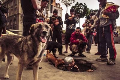 Straßenszene mit Männern und Hunden