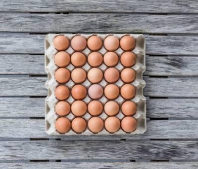Hühnereier im Karton