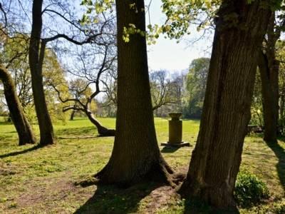 Denkmal umgeben von Bäumen auf einer Wiese