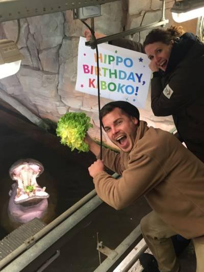 Zwei Menschen füttern ein Flusspferd