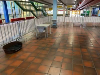Eine große Halle mit Tischen, Stühlen, Absperrungen und Hundekörben.