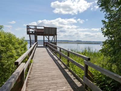 Blick über einen Weg zu einem Aussichtsturm am Ufer eines großen Sees.