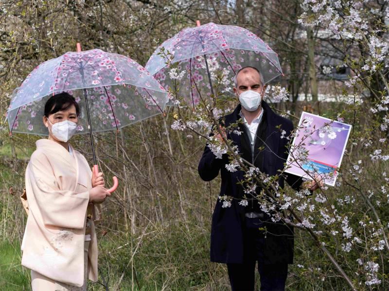 Frau Hiroyo Nakamoto und Bürgermeister Onay präsentieren das Programm des Kirschblütenprogramms.