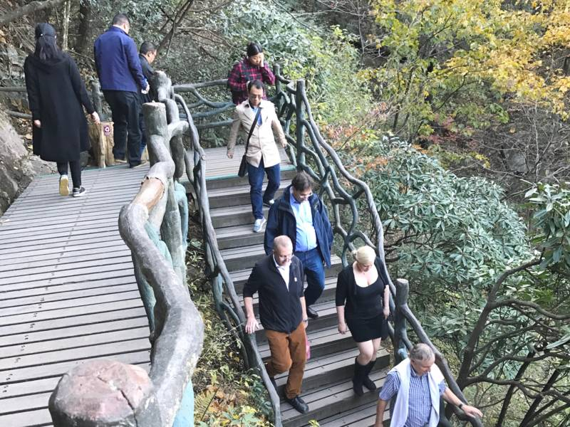 Eine Treppe aus Holz führt den Hang hinunter.