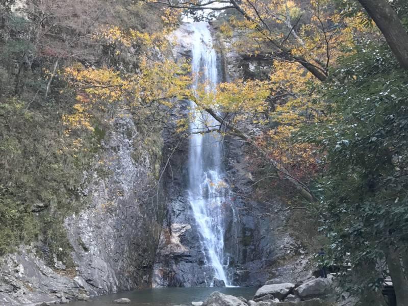 Ein Wasserfall stürzt Felswand hinunter.