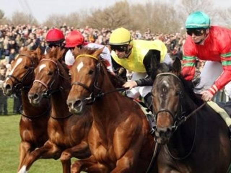 Pferde und Jockeys