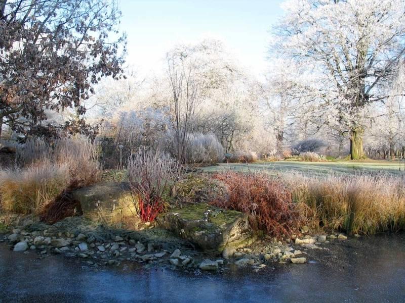 Winter im Berggarten