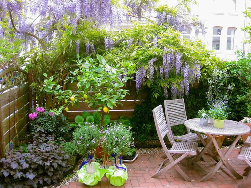 Eine Terrasse mit vielen Pflanzen und Sträuchern.