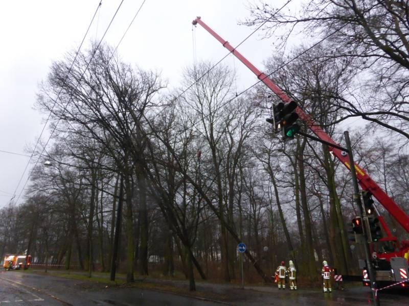 Feuerwehrkran bei der Sicherung umsturzgefährdeter Bäume