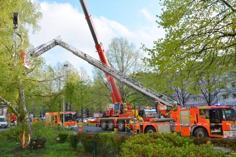 Um den Absturz auf das Gebäude zu verhindern, entlasteten die Feuerwehrleute zunächst die Baumkrone mit ihrem Kranwagen