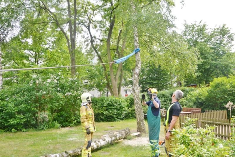 Der Baum wurde mit der im Fahrzeug eingebauten Zugeinrichtung gesichert