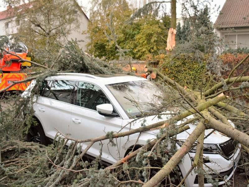 Ein umgestürzter Baum liegt auf einem weißen PKW. Im Hintergrund eine Drehleiter der Feuerwehr Hannover.