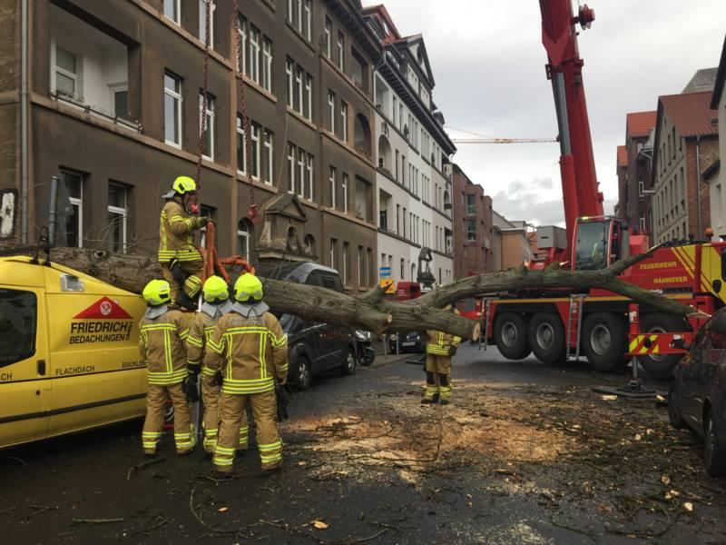 Um die Gefahr durch den umgestürzten Baum zu beseitigen und ihn von den Fahrzeu-gen zu heben, war ein Feuerwehrkran erforderlich.