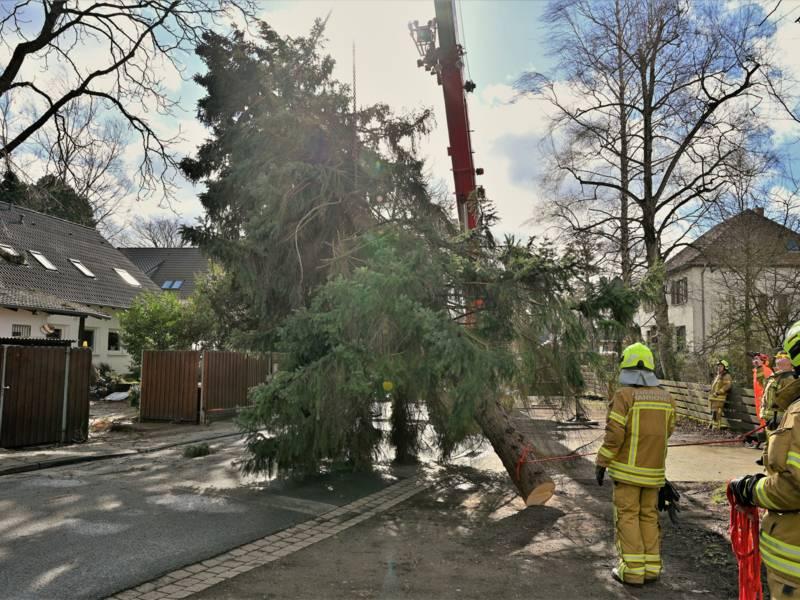 Zehn Einsatzkräfte waren mit vier Fahrzeugen für zweieinhalb Stunden im Stadtteil Isernhagen-Süd im Einsatz.