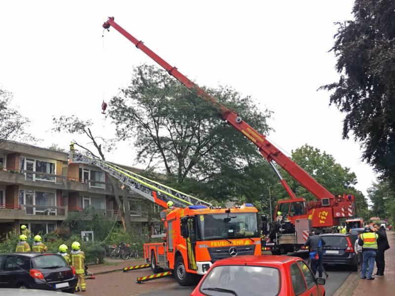 Mit Hilfe eines Feuerwehrkranwagens wurden an der Einsatzstelle in der Gorch-Fock-Straße Stamm- und Kronenteile abgetragen.