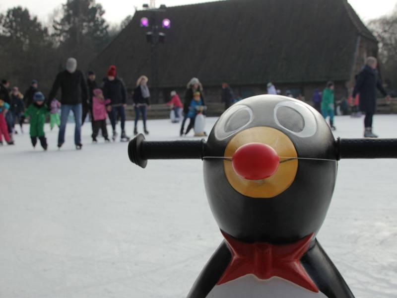 Gerät zum Stützen beim Eislaufen im Vordergrund, im Hintergrund unscharf einige Personen auf einer Eisfläche.