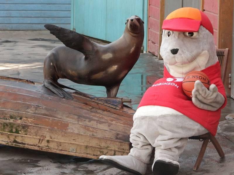 Ein Seelöwe und ein Robben-Maskottchen.