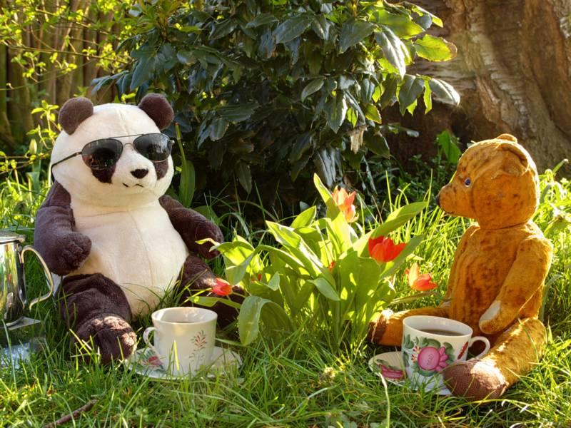 Zwei Teddybären sitzen im Gras nebeneinander