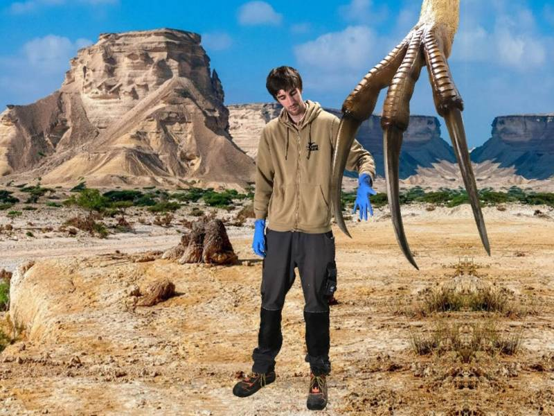 Mann steht neben einer Dinokralle