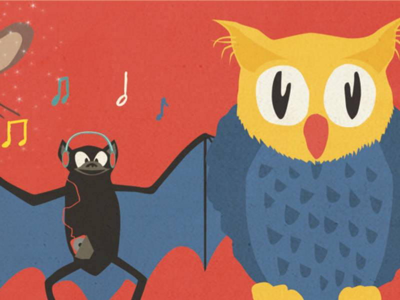 Eine gezeichnete Eule und eine Fledermaus