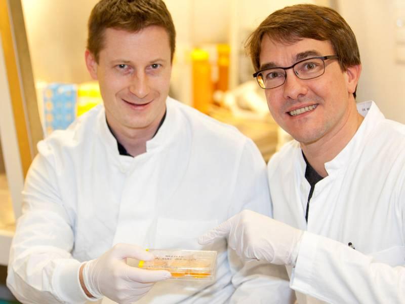 Zwei Männer in Weißen Kitteln mit weißen Handschuhen
