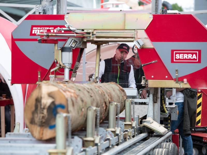 Maschine zur Bearbeitung von Baumstämmen