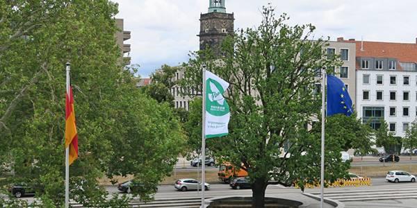 Flaggen auf dem Trammplatz.