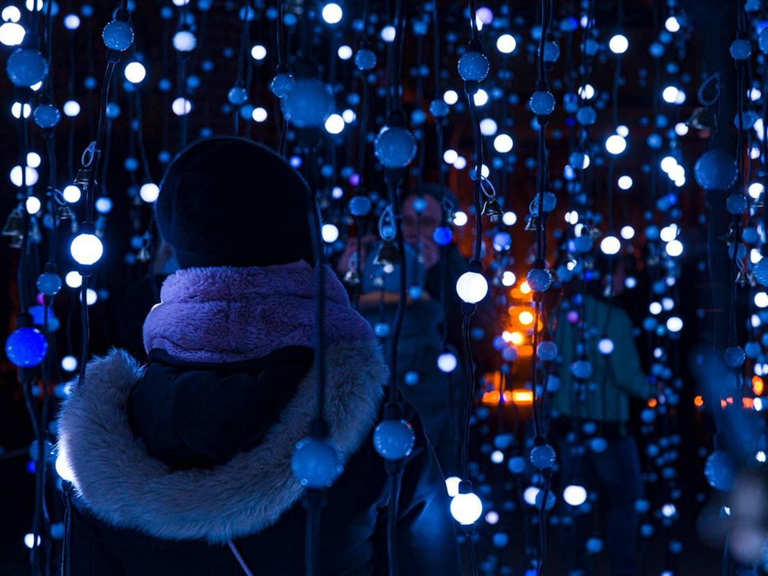Christmas Garden Im Zoo Weihnachten Termine Hannover De