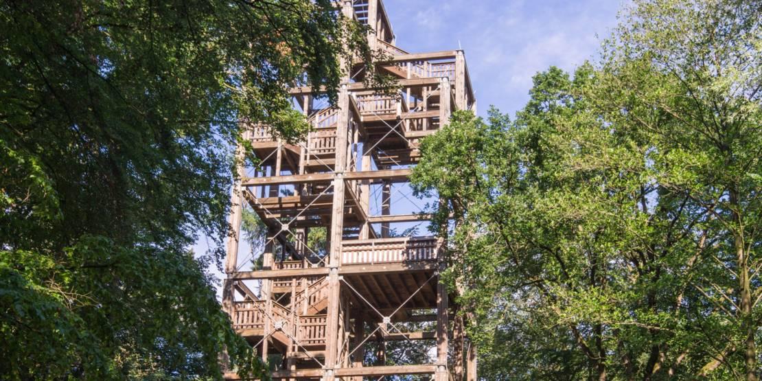 Ein Holzturm in der Eilenriede.