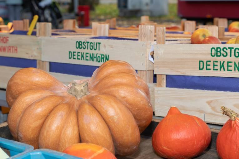 Kürbisse und Äpfel  werden auf dem Wochenmarkt angeboten.