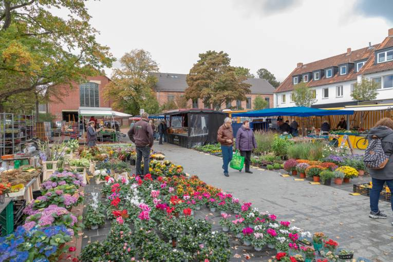 Im Vordergrund Verkaufsblumen, im Hintergrund Kundinnen und Kunden des Wochenmarktes sowie Marktstände.
