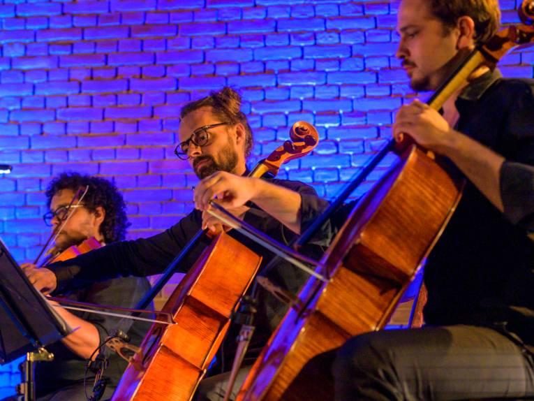 Drei Musiker spielen auf Streichinstrumenten, der Hintergrund ist blau.