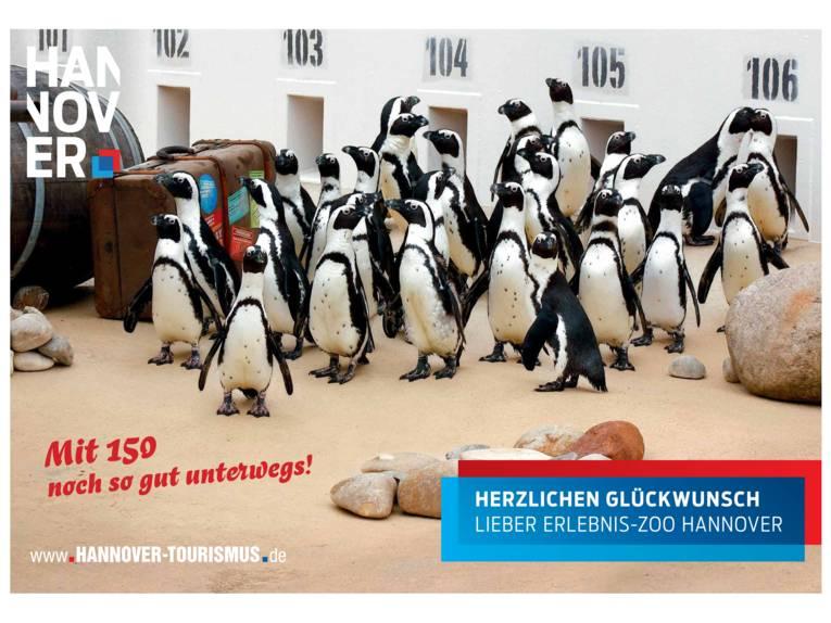 Pinguine im Erlebnis-Zoo Hannover