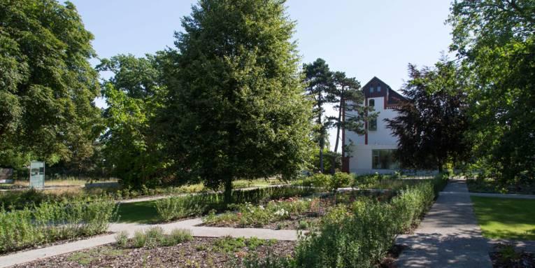 Ein Außengelände mit Rasenkorridoren, Stegen und Bäumen. Im Hintergrund ist das Gebäude zu sehen, zu dem das Gelände gehört.