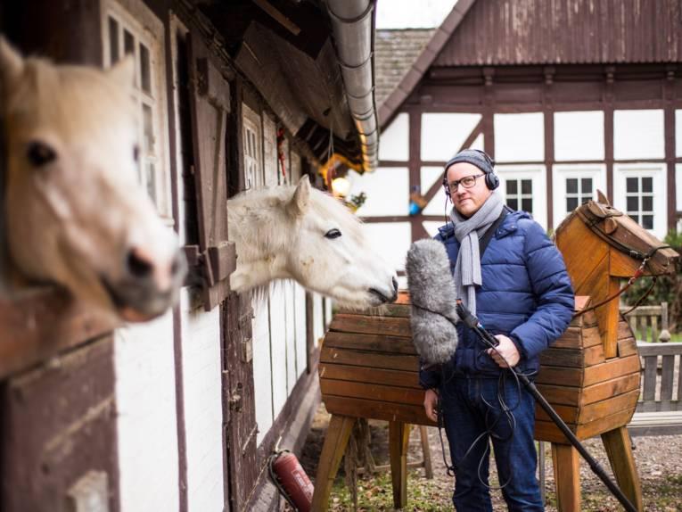 Zwei Pferde gucken aus ihrem Stall und ein Mann steht davor und macht Tonaufnahmen.