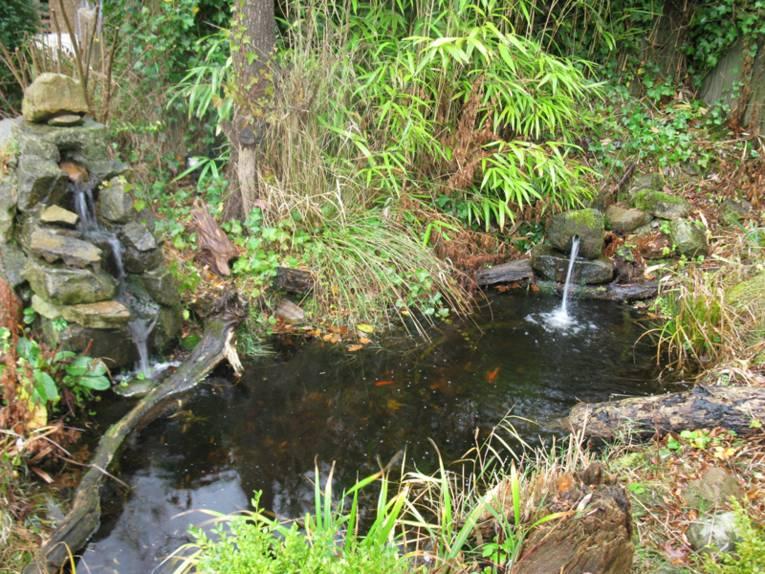 Ein kleiner Teich umgeben von Grünem. An zwei Stellen sind Steine übereinander gestapelt und Wasser fließt von dort aus in den Teich.