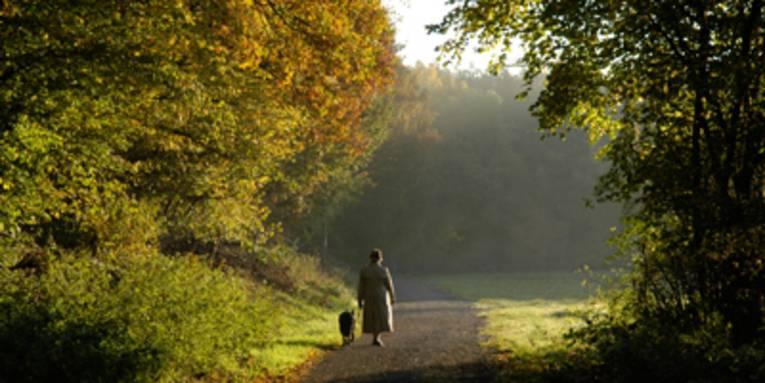 Spaziergängerin mit Hund in herbstlichem Wald
