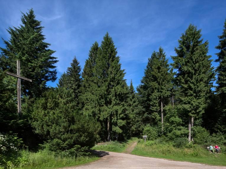 Wegekreuzung in einem Nadelwald mit Holzkreuz und Bank