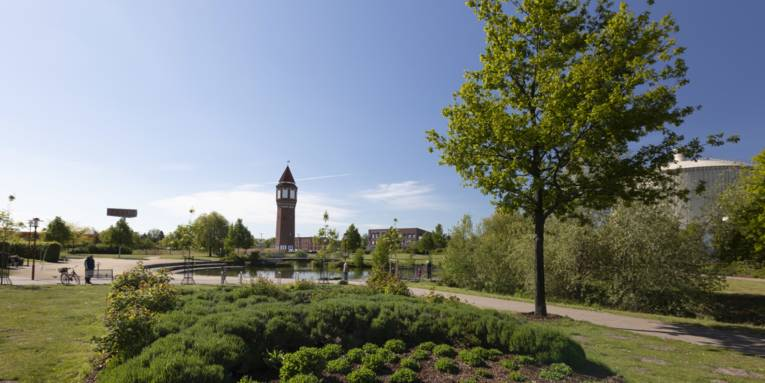 Grünflächen, Beete, im Hintergrund ein Turm