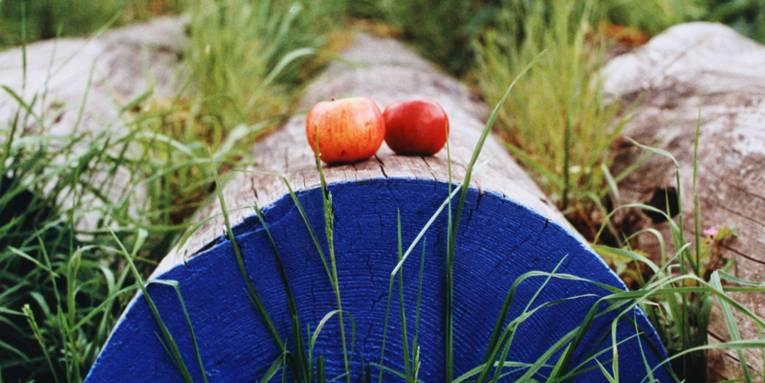 Drei im Gras liegende Holzpfosten. Auf dem mittleren liegen zwei Äpfel, die dem Betrachter zugewandte Schnittseite ist blau angemalt